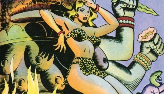 Fumetto italiano vintage Pantera Bionda