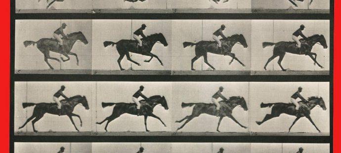 Come corrono i cavalli ?